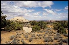 canyonlands0306