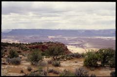 canyonlands0307