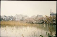japan034