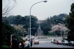 japan155