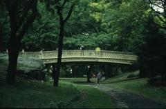 013_centralpark