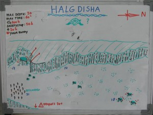 Halg_Disha_map