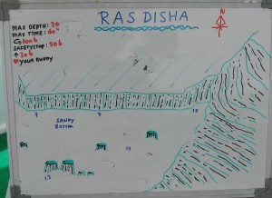 Ras_Disha_map